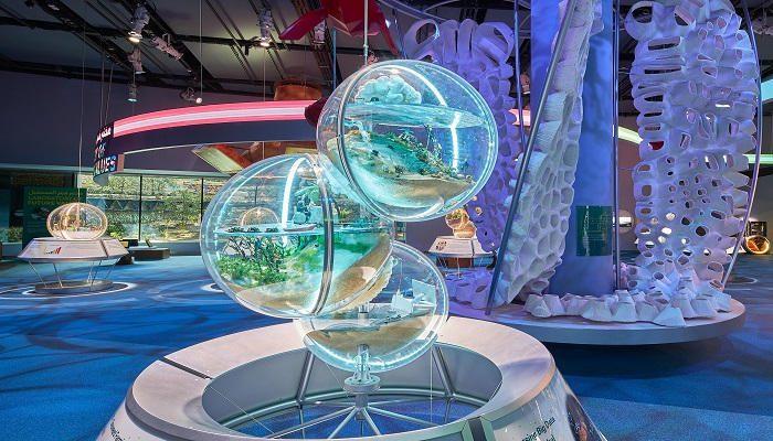147 213200 magic expo 2020 alain camera explores pavilion 31