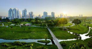 بعد كوفد-19 المدن المستدامة هي الحل